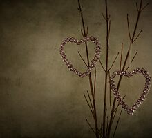Love tinkle and twigs wide by Jenifer Wallis