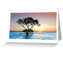 Summer Sunrise Cleveland Qld Australia Greeting Card