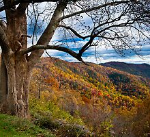 Guardian of The Ridge by Joe Jennelle