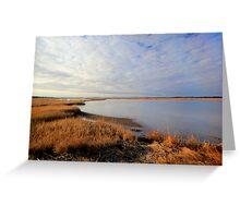 Parker River Wildlife Sanctuary: January 2012 Greeting Card
