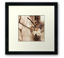 and then there was you. Framed Print