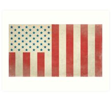 American Civilian Flag of Peace Art Print
