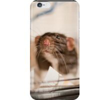 Rat iPhone Case/Skin