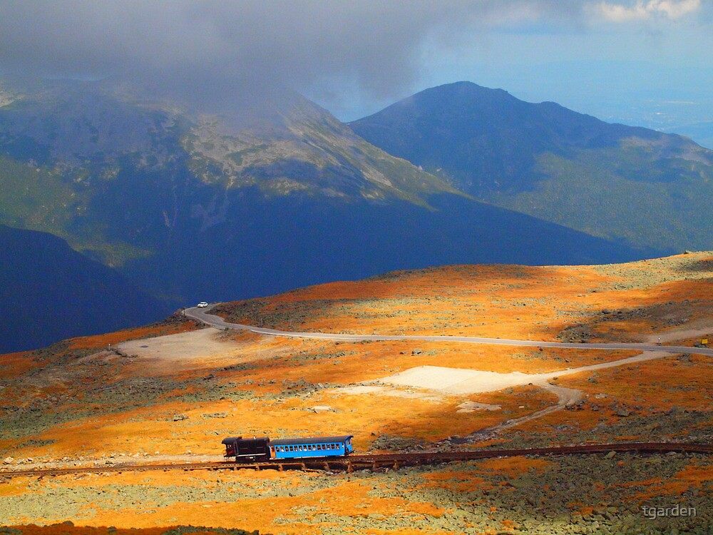 Cog Rail #2 by tgarden