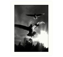 avian 66 Art Print