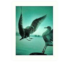 avian 70 Art Print