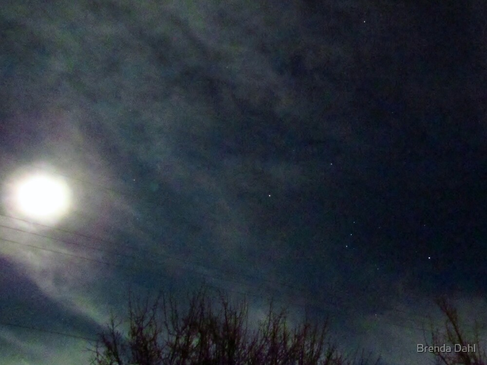 2nd Amateur night shot 1-09-12 by Brenda Dahl