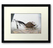Picnic Sandals Framed Print