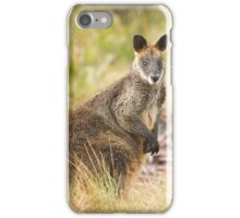 Wallaby, Blue Mountains, NSW iPhone Case/Skin