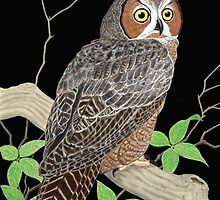 Great Horned Owl by Walter Colvin