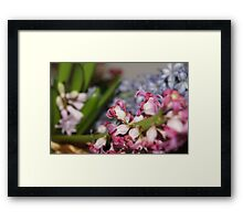 Purple, Blue and White Framed Print