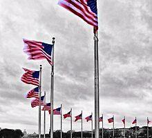 American Flags in Washington,DC by KellyHeaton
