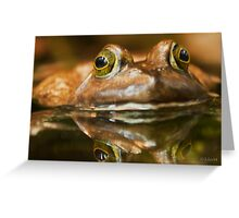 Kiss  the Frog and Free the Prince  Greeting Card