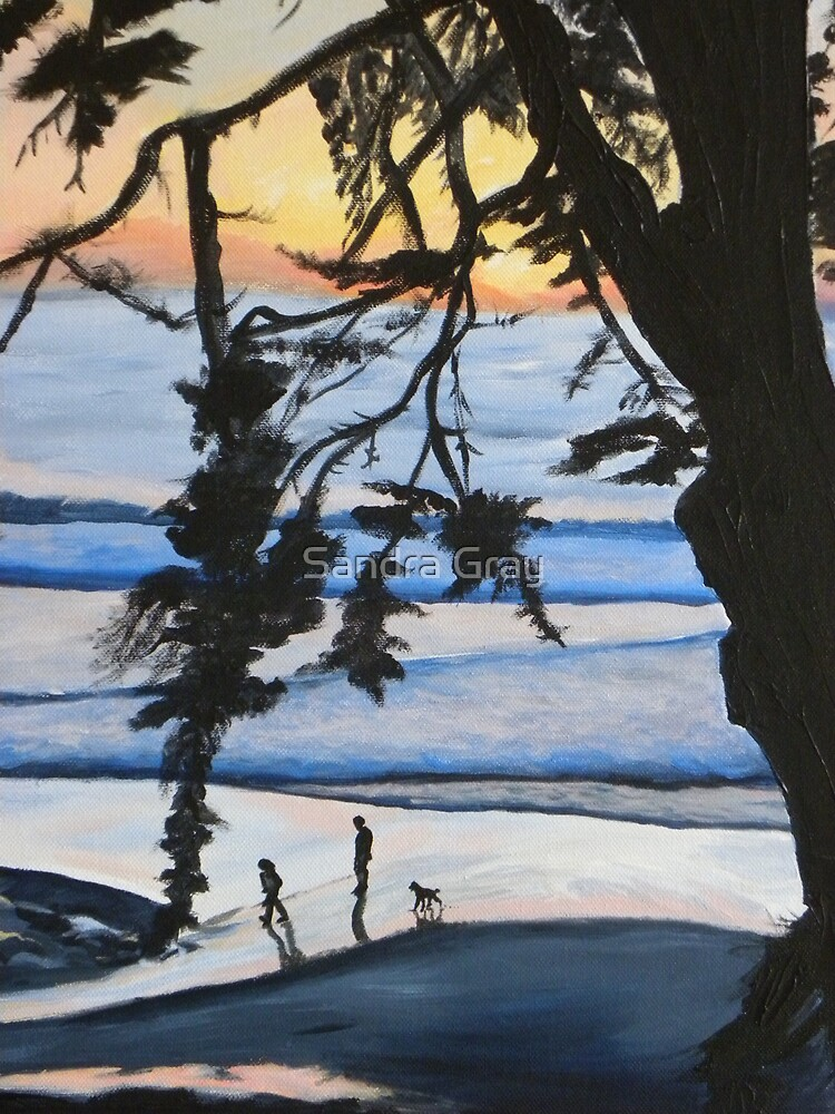 Sunset, Family Walks With Dog by Sandra Gray