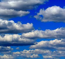 Cumulus Clouds by Larry Trupp