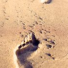Footprints in the sand by Tim Scott