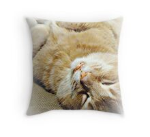 Chill'N Throw Pillow