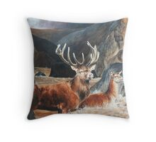 The King Crossing the Water. Throw Pillow