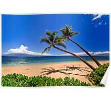Palm trees on a beach in Hawaii Poster