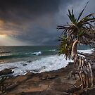 A Storms blowin' in... by Ryan O'Donoghue