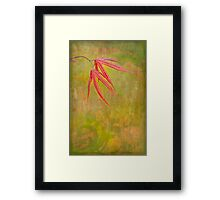 What Spring Brings Framed Print