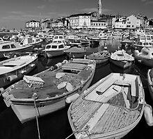 The Harbor - Rovinj Croatia by JimBremer