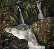 Coed Cymerau Isaf waterfall by John Kiely