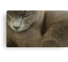Grey Canvas Print