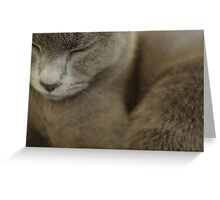 Grey Greeting Card