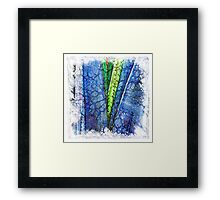 The Atlas of Dreams - Color Plate 187 Framed Print