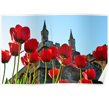 Tulips,Turrets and Tower Poster