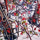 Berries in Snow by Dan Wilcox