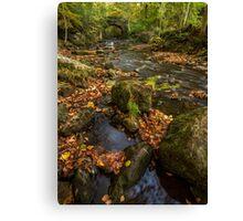 Maybeck Autumn Colours Canvas Print