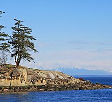 Galiano Island looks to the Strait of Georgia by TerrillWelch