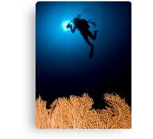 Underwater photograph of a diver swimming above an Anella Alcyonacea (soft corals) coral Canvas Print
