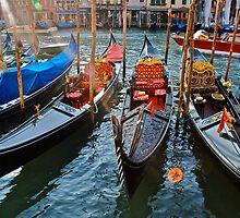Venice by bamorris