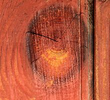 More wooden abstract ( Letter O) by john forrant