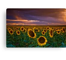 God's Painted Sky Canvas Print