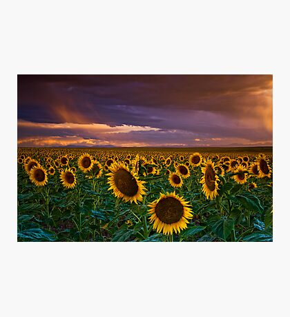 God's Painted Sky Photographic Print