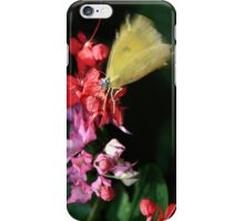 Buttery Flowers iPhone Case/Skin