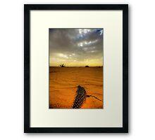Desert Feather Framed Print
