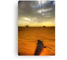 Desert Feather Canvas Print