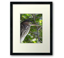 Profile - Perfil Framed Print