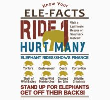 Ultimate Elephant Ride Facts by Nola Lee Kelsey