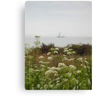 flower lined beach Canvas Print