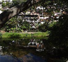 River Front -  Frente Al River by Bernhard Matejka