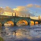 Wade&#x27;s Bridge at Aberfeldy by Tom Gomez