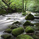 Aira Force Waterfall Walk- Lake District by Paul Duckett