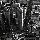 Flatiron Building, New York by dozzie