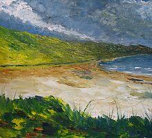 Coastal road to Barleycove by Conor Murphy